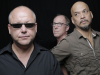 Paean to the Pixies